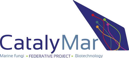 Catalymar
