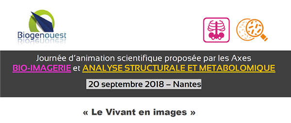 Journée d'animation scientifique 2018